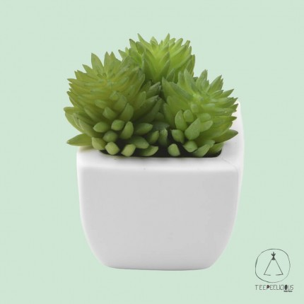 Artificial succulent 3