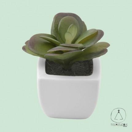 Artificial succulent 4